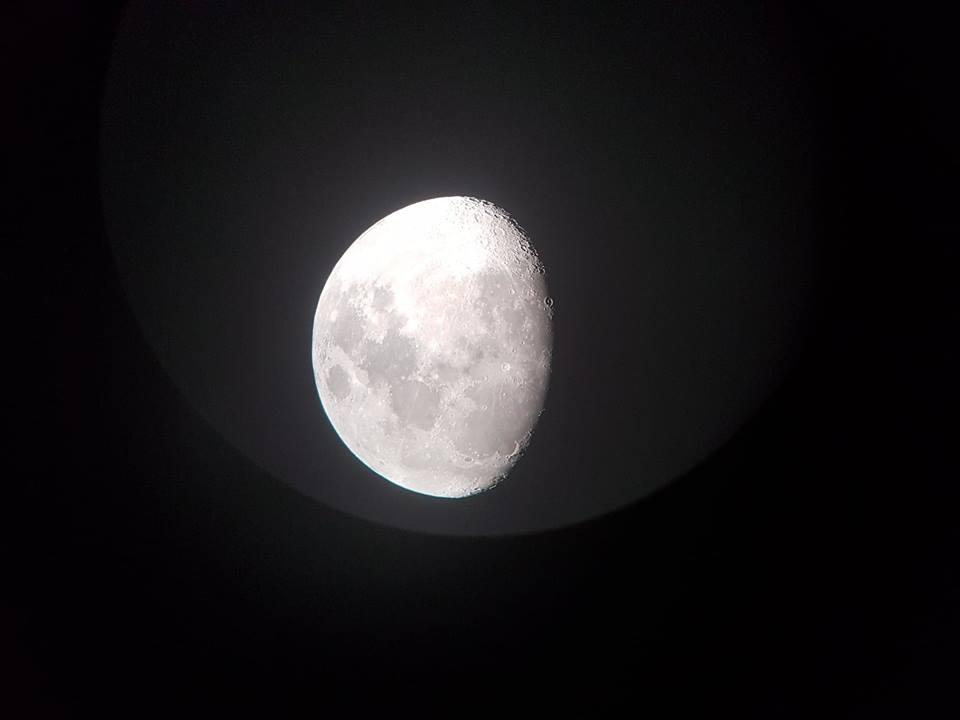 Luna-Mario-Primoz-1