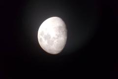 Luna-Mario-Primoz-2